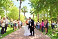 misty and jason park wedding orlando florida.jpg